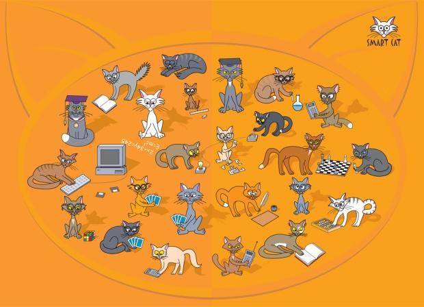 smartcats