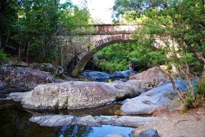 Little Crystal Creek Bridge in Paluma rainforest