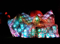 Light installations in the park